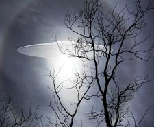 Is there Alien life out there?