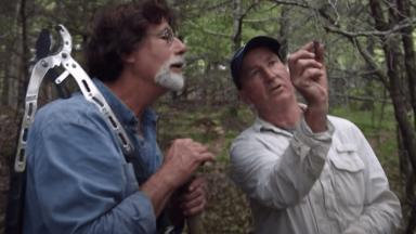 Rick and Gary take a closer look