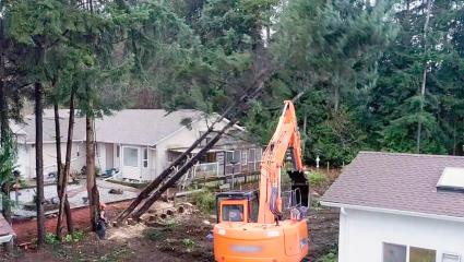 A photograph showing the tree drop in action next to residential houses